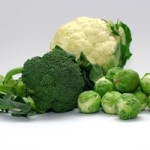 Studio shot of cabbage family (cauliflower, broccoli and brussel sprouts).